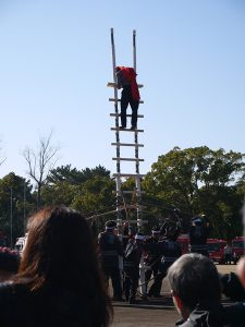 消防団はしご演技の写真