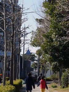 豊橋公園へ走る写真