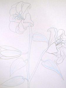 描いた百合の写真
